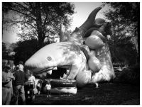 inflatable shark - Wamego Tulip Festival
