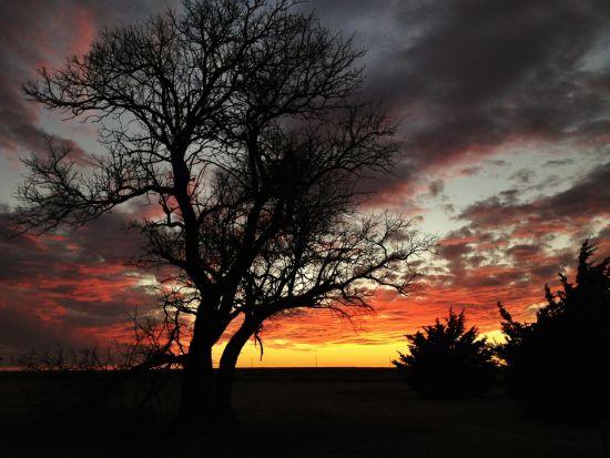sunset Dodge _sm